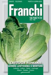 LETTUCE ROMAINE (Lettuga) lentissima a montare 4