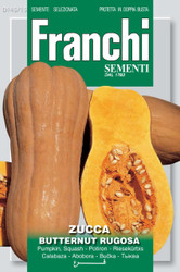 PUMPKIN (Zucca) butternut rugosa