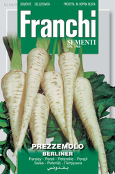 PARSLEY ROOT (Prezzemolo) berliner