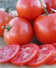TOMATO (Pomodoro) Peron