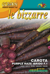 CARROT (Carota) Purple Haze Hybrid F.1
