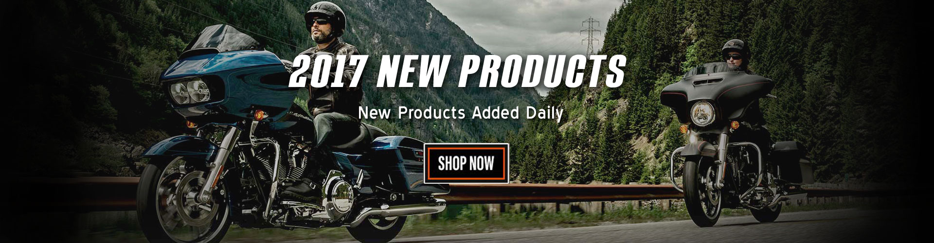 2017 Harley-Davidson Products