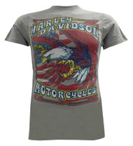 Harley-Davidson® Men's T-Shirt, Colorful Eagle Descending Lightweight Tee, Gray