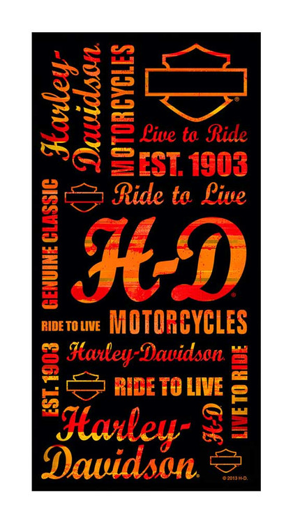 Harley-Davidson® Beach Towel, Orange Striped H-D Script, 30 x 60 inch, 12180