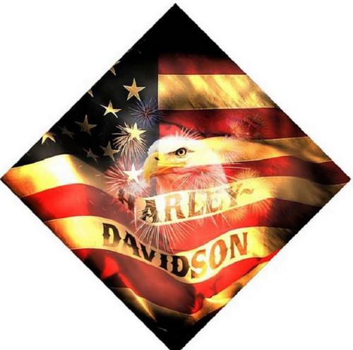 Harley-Davidson® 24 X 24 Soaring Eagle American Flag Bandana BA16884