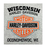 Harley-Davidson® Men's Bar & Shield Logo Pullover Hooded Sweatshirt, Gray