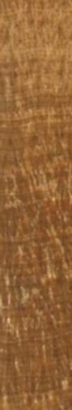 Woodstone Marble 2x12 Deco