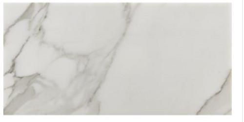 Calacatta Borghini 12x24 Honed