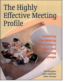 Highly Effective Meeting Profile