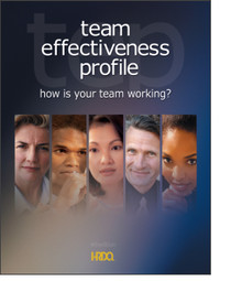 Team Effectiveness Profile Self Assessment