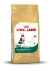Royal Canin Kitten Maine Coon 36