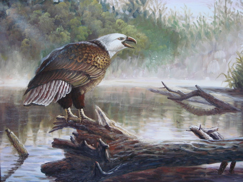 Beautiful medium sized painting, stretched but without frame, by Mike.  An eagle sits on a fallen log near a river.