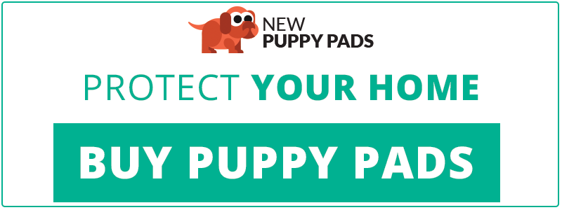 cta-newpuppypads-companyadvice.png