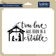True Love Born in Stable