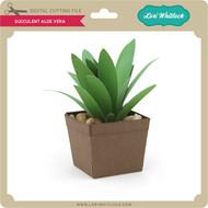 Succulent Aloe Vera