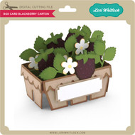 Box Card Blackberry Carton