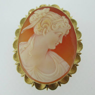 14k Yellow Gold Conch Shell Cameo Pendant Brooch Pin