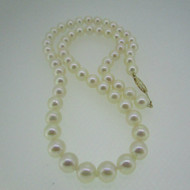 14k Yellow Gold 7.0mm Pearl Necklace