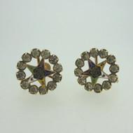 Vintage Ladies Gold Tone Masonic Order of the Eastern Star Screw Back Earrings