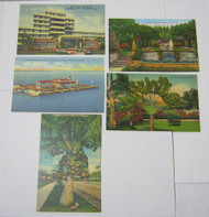 St. Petersburg Palm Beach & Florida Views Vtg. Postcards