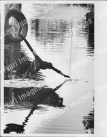 http://images.borsariimages.com/AA-9923-PB/WMP/P-ABW-737-PB_F.JPG?r=1