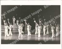 http://images.borsariimages.com/AB-2970-PB/WMP/P-ACL-898-PB_F.JPG