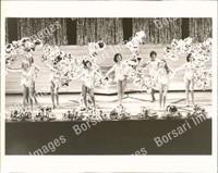 http://images.borsariimages.com/AB-2970-PB/WMP/P-ACL-980-PB_F.JPG