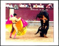 http://images.mmgarchives.com/CT/AV/AVX/AVX-682-CT_F.JPG