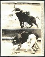 http://images.mmgarchives.com/CT/AV/AVX/AVX-670-CT_F.JPG
