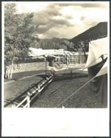 http://images.mmgarchives.com/CT/AV/AVR/AVR-785-CT_F.JPG