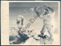 http://images.mmgarchives.com/CT/AM/AMX/AMX-044-CT_F.JPG