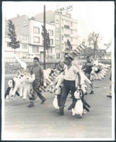 http://images.mmgarchives.com/CT/AK/AKX/AKX-330-CT_F.JPG