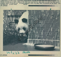 http://images.mmgarchives.com/CT/AF/AFZ/AFZ-439-CT_F.JPG