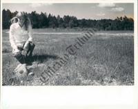 http://images.mmgarchives.com/CT/AE/AEI/AEI-785-CT_F.JPG