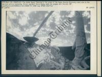 http://images.mmgarchives.com/CT/AG/AGI/AGI-906-CT_F.JPG