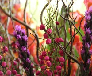 florals.jpg