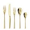 thumbnail image of H Art Gold Stainless Steel 5 Pcs Place Setting (solid handle knife) (52727G93)