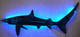 Threasher Shark 1