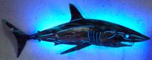 Maco Shark 2