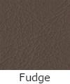 fudge-100x100.jpg