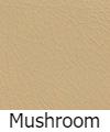 mushroom-lsk-1.jpg