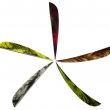 arrow-components-622pic1.jpg