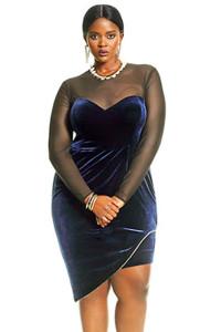 Long Sleeve Mesh Insert Velvet Plus Size Dress