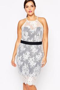 Paper Dolls Plus Lace Overlay Halterneck Pencil Dress