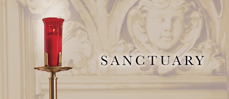 cat-sanctuary.jpg
