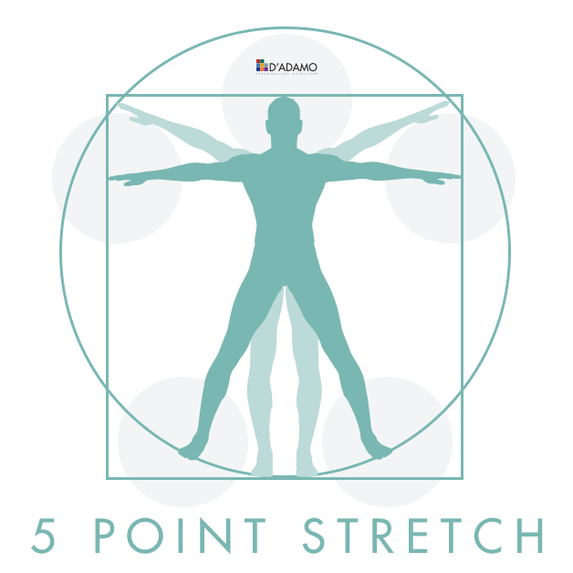 5 Point Stretch
