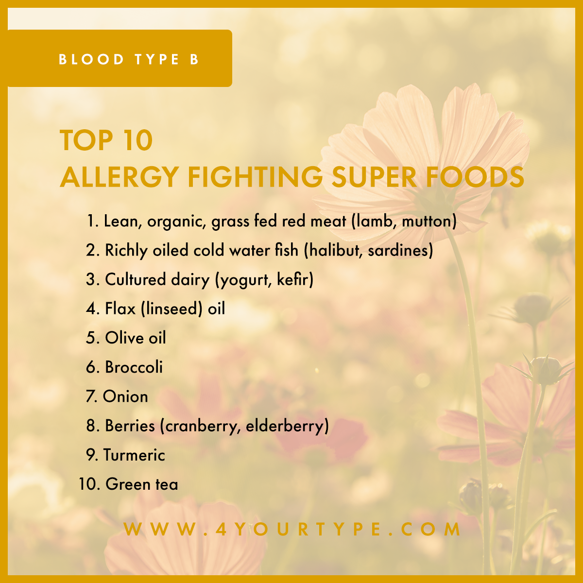 Blood Type B - Allergy Fighting Foods