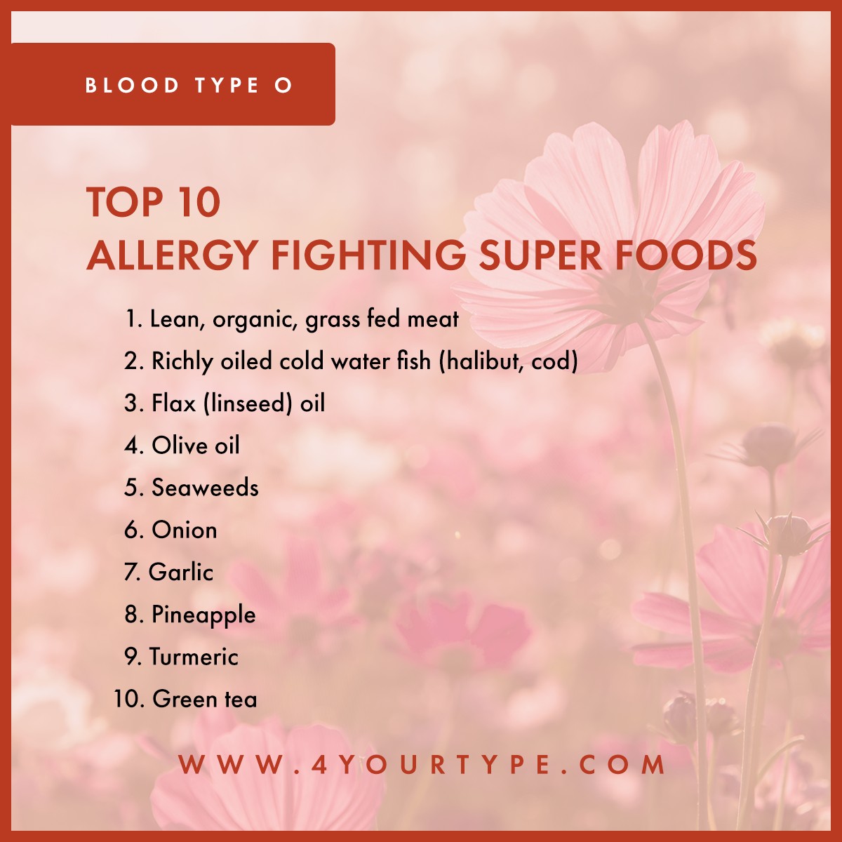 Blood Type O - Allergy Fighting Foods