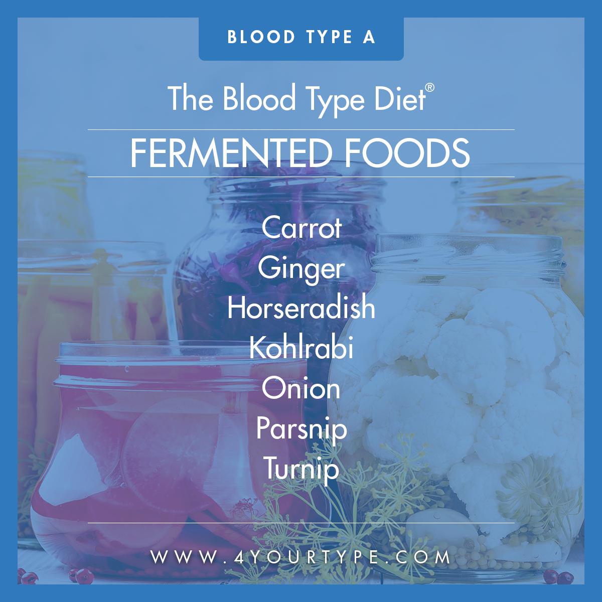 Blood Type A - Fermented Foods