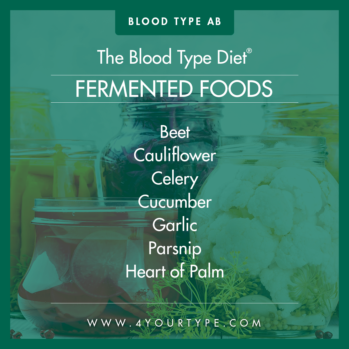 Blood Type AB - Fermented Foods